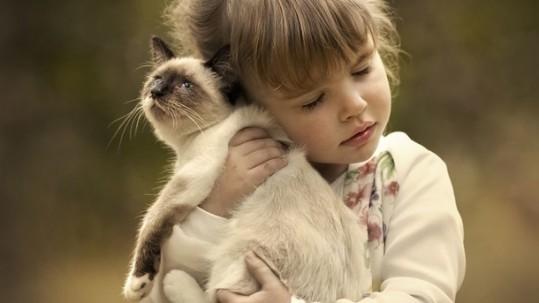 5411-dzieci-i-koty